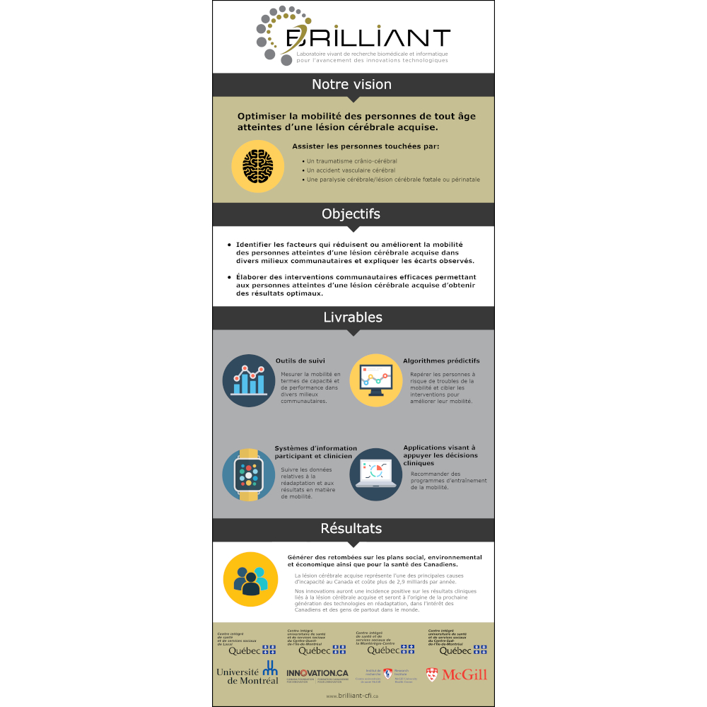 BRIILLIANT Infographic Thumbnail French